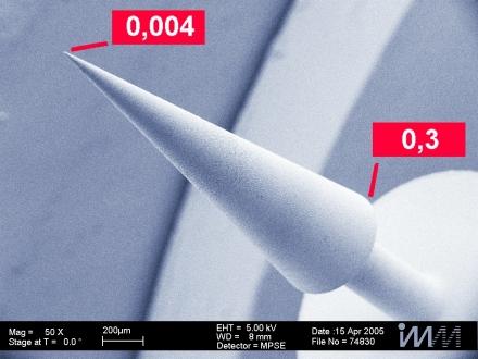 Anwendung Elekronenmikroskopaufnahmen